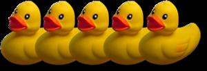 Little Ducks In A Row