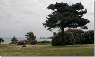 Old Harry Rocks From The Knoll House Hotel