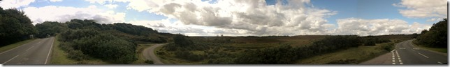 New Forest Heathland Panorama